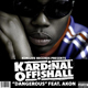 Akon Ft Kardinal Offishall